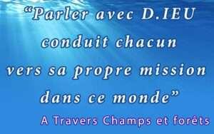 Phrase champs 4